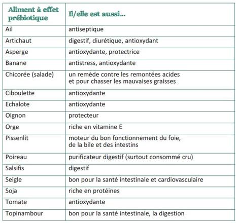 aliment prebiotique