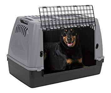 amazon cage de transport pour chien