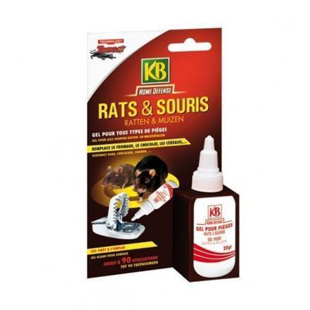 appat pour souris