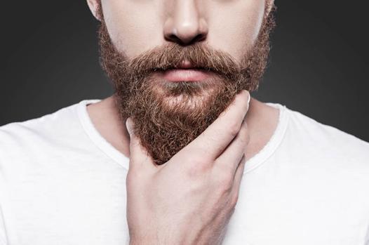 barbe seche
