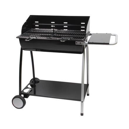 barbecue charbon ou bois