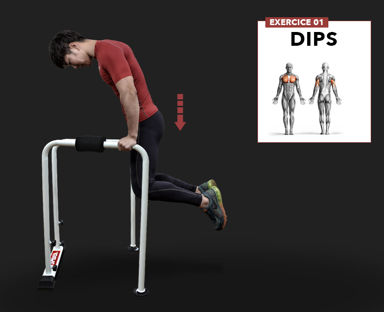 barre dips pliable