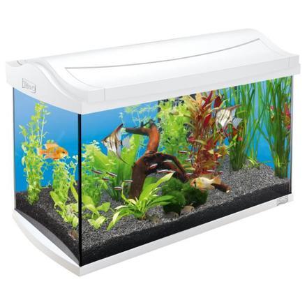 chauffage aquarium 60l