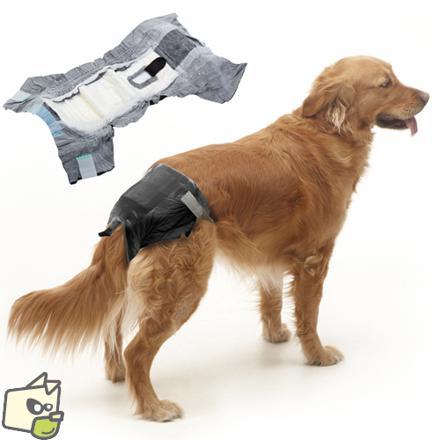 couche pour chien femelle