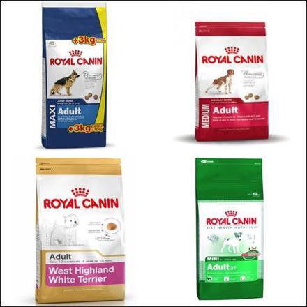 croquette royal canin pas cher