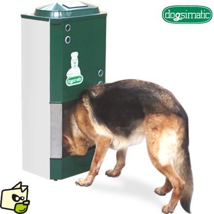 distributeur automatique de croquettes pour gros chien