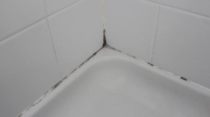 douche moisissure