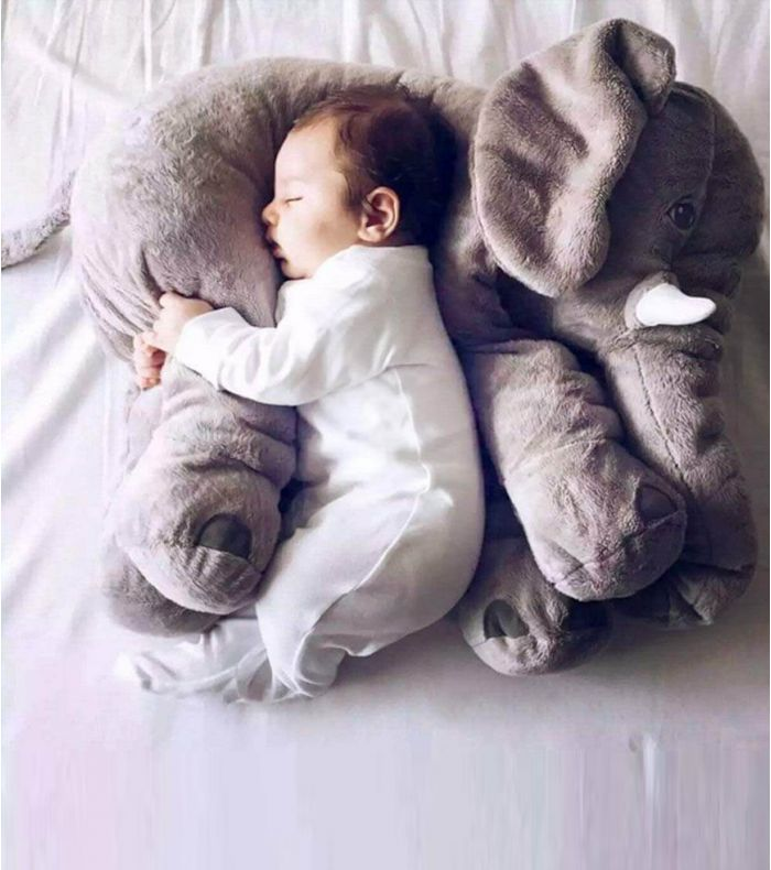 elephant cale bebe