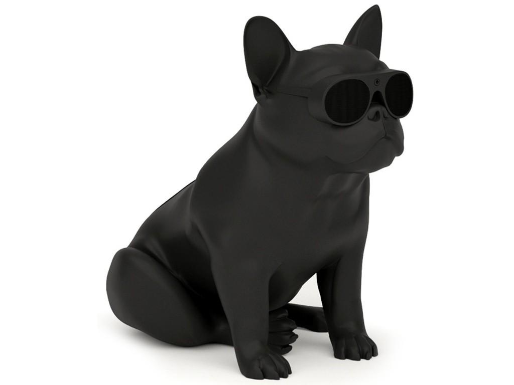 enceinte bluetooth chien