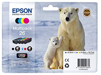 epson ours polaire