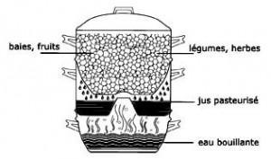 extracteur de jus vapeur fonctionnement