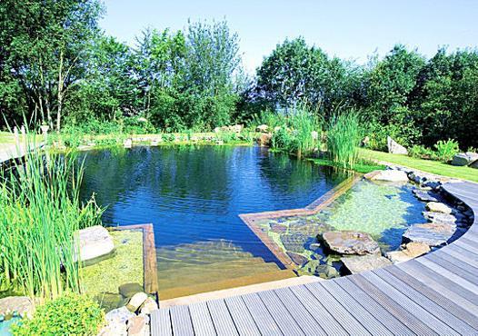 faire piscine naturelle