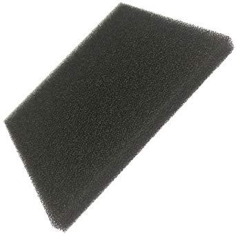 filtre mousse aspirateur