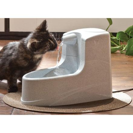 fontaine pour chat
