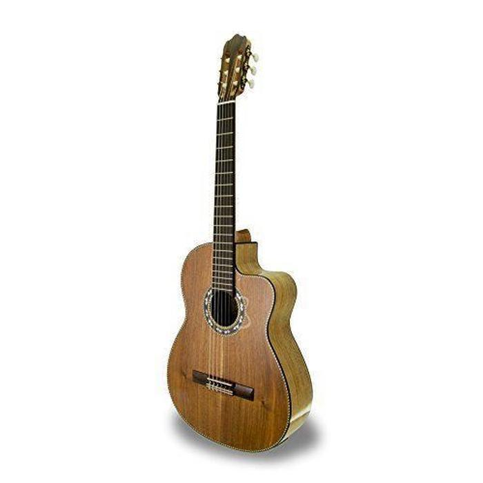 guitare apc