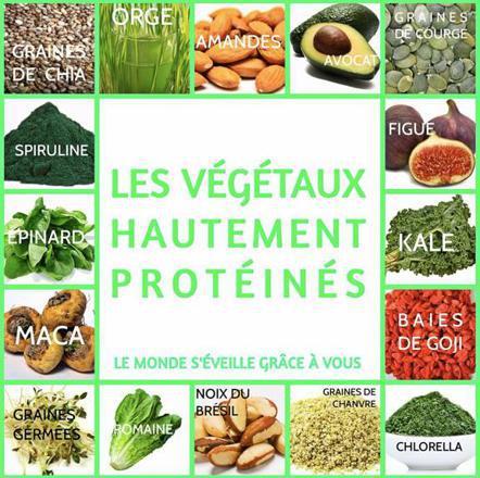 ou trouver de la proteine