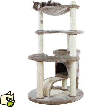 plan arbre a chat