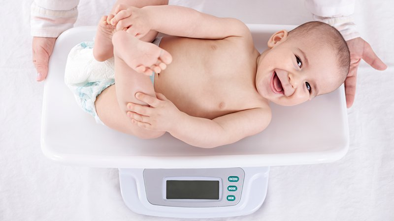poids bébé 7 mois