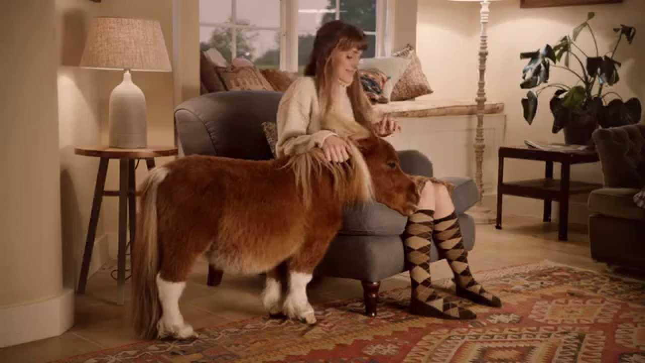 poney amazon