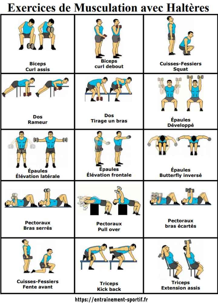 position musculation avec haltères