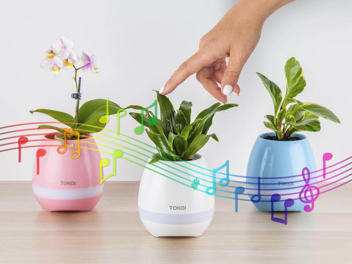 pot musical