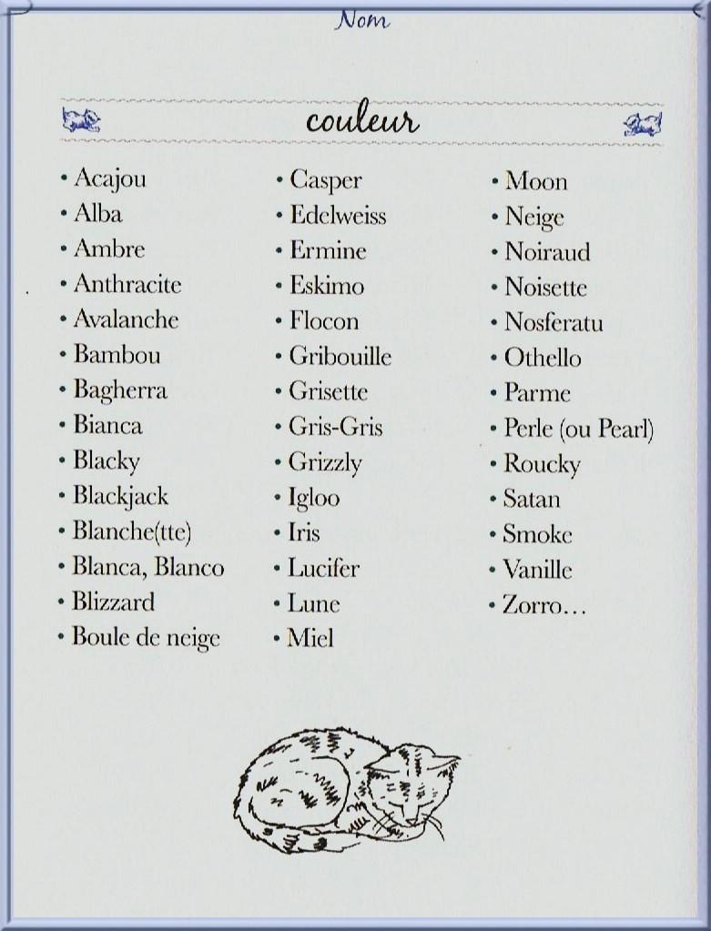 prenom pour chat gris