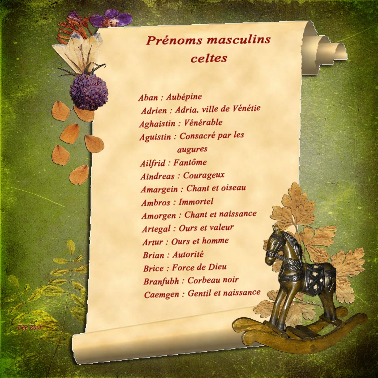 prénoms celtes