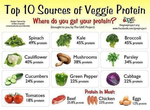 proteine vegetal