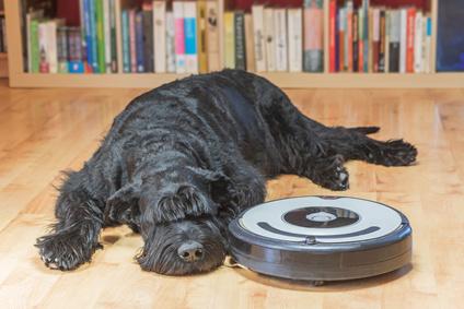 robot aspirateur poil de chien