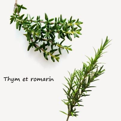 romarin thym