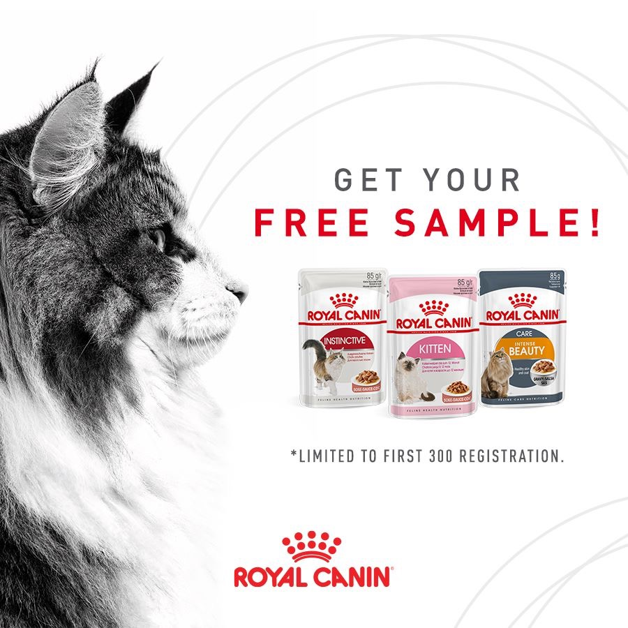 royal canin promotions