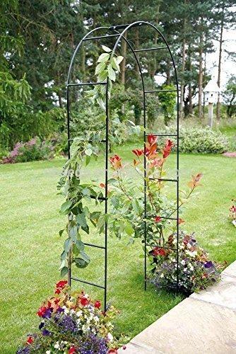 arche metal pour plante grimpante