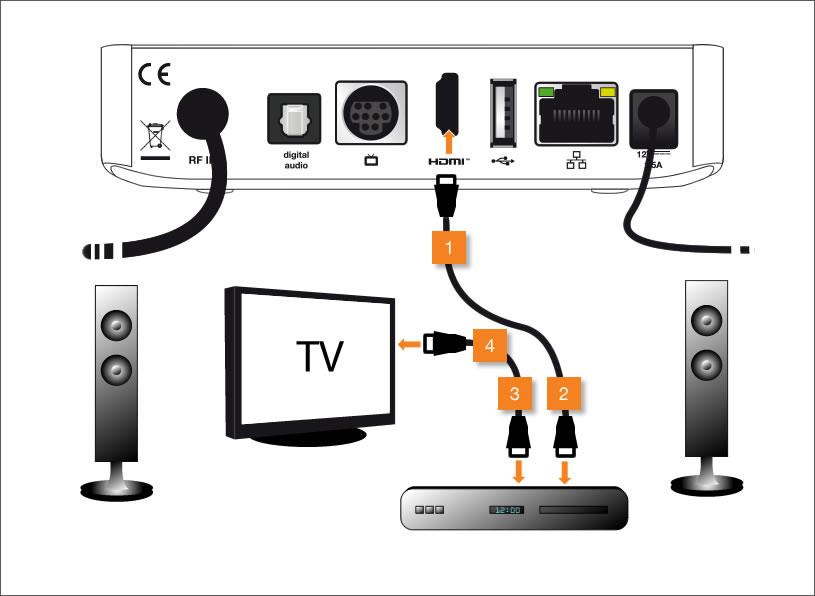 brancher un ampli sur tv