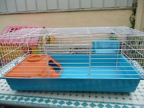 cage a lapin d occasion