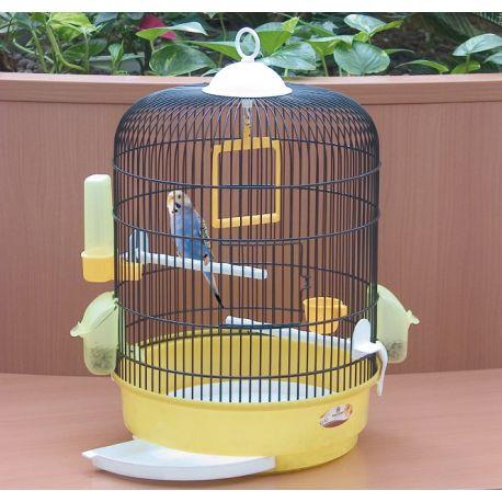 cage pas cher