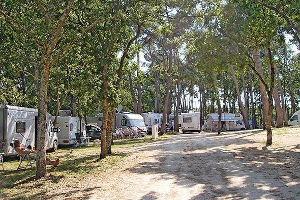 camping bari
