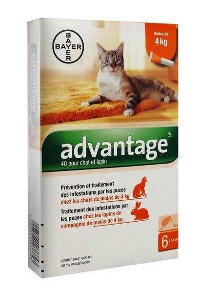 meilleur anti puces chat