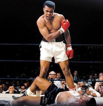 meilleur boxer