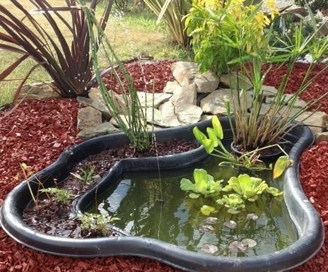 mini bassin sans pompe