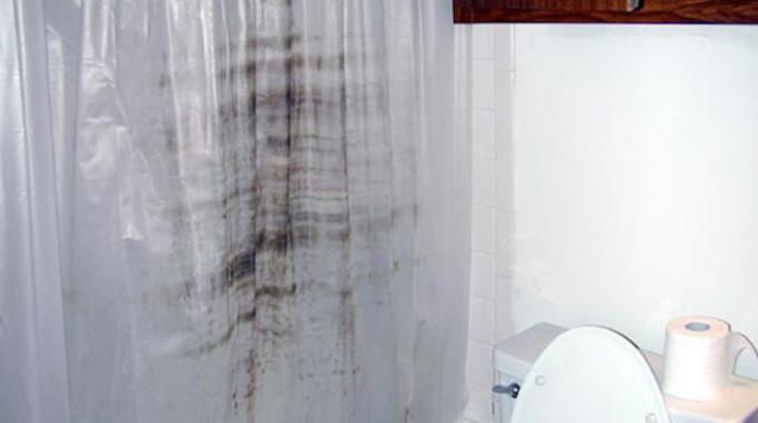 moisissure rideau douche