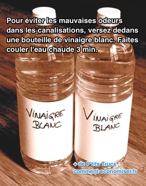 odeur canalisation