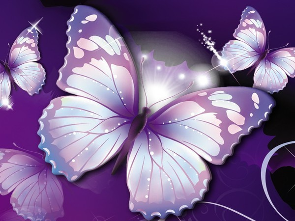 papillon fond d\'écran