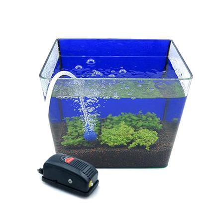 pompe oxygène aquarium