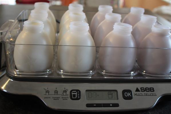 yaourt a boire seb multi delice
